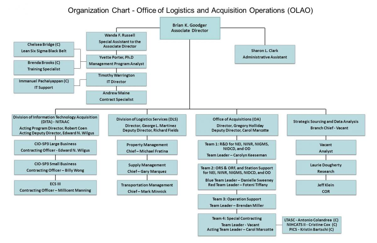 employee organizational chart template word Success